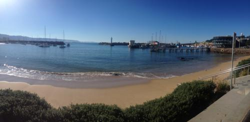 Wollongong Harbour (good fish and chips)