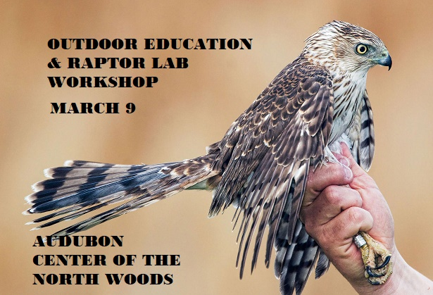 Raptor Lab at Audubon Center of the North Woods Sandstone MN