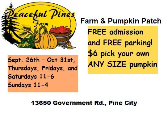 Pumpkin, Pine City, Peaceful Farms