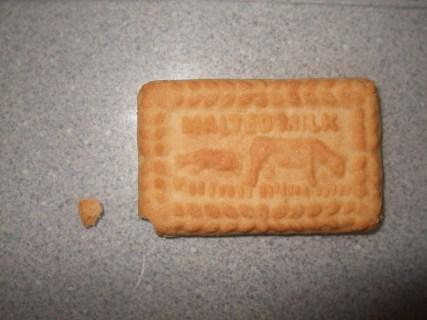 crumb of biscuit