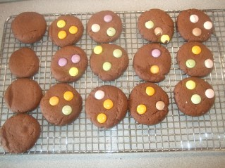 dotty spotty biscuits