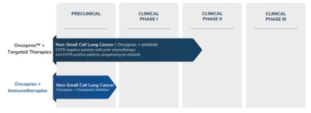 Per the recent 10-K, Oncoprex is the company's R&D pipeline thus far (Pg. 5):
