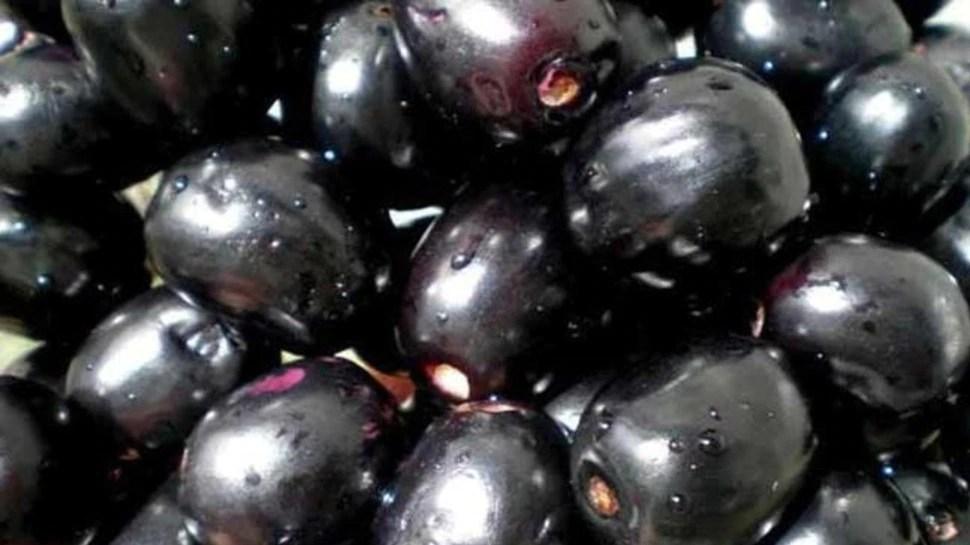बड़े काम का है यह छोटा सा फल, गर्मियों में इन 5 बीमारियों से रखता है दूर