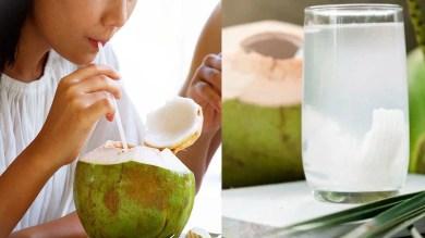 बच्चों समेत इनके लिए बेहद फायदेमंद है नारियल पानी, एक्सपर्ट्स ने बताया सेवन का सही समय, जानें लाभ