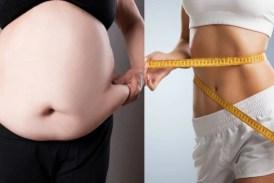 Weight Loss Tips: वजन घटाने में 100 फीसदी कारगर हैं यह उपाय! कुछ ही हफ्तों में गायब हो जाएगी पेट की चर्बी