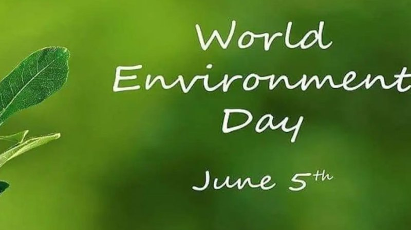If it is we, then you must know these important things on World Environment Day