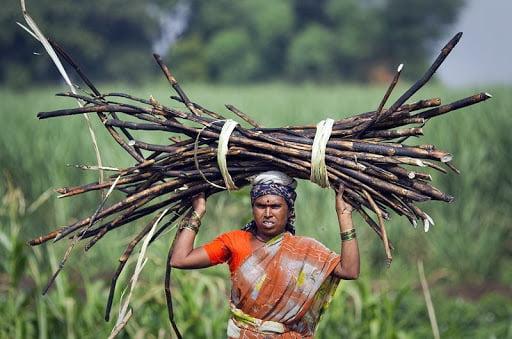 महाराष्ट्र की इन महिलाओं को रोज़ी-रोटी के लिए निकलवाना पड़ रहा है 'गर्भाशय'