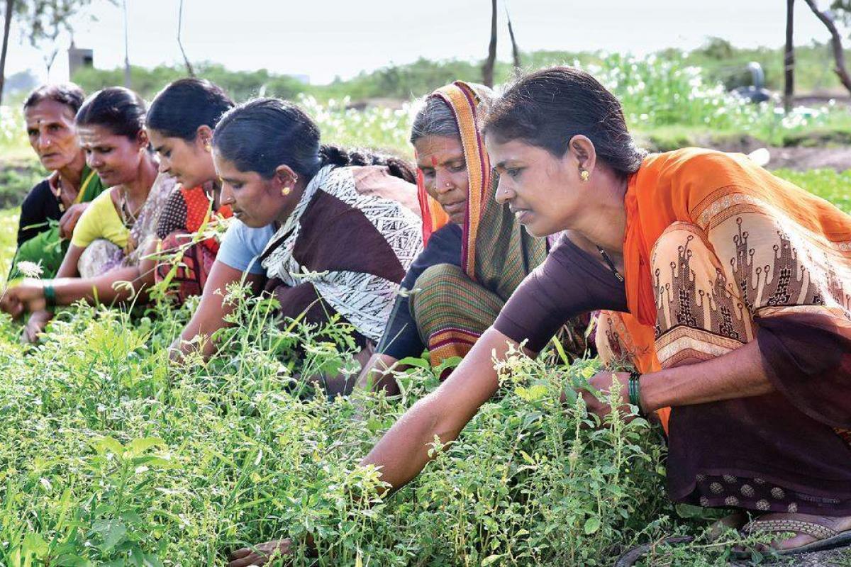 कोविड और पोस्ट-कोविड दौर में कितनी बदली ग्रामीण क्षेत्र और महिलाओं की स्थिति
