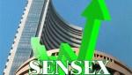 Sensex rises 521 points
