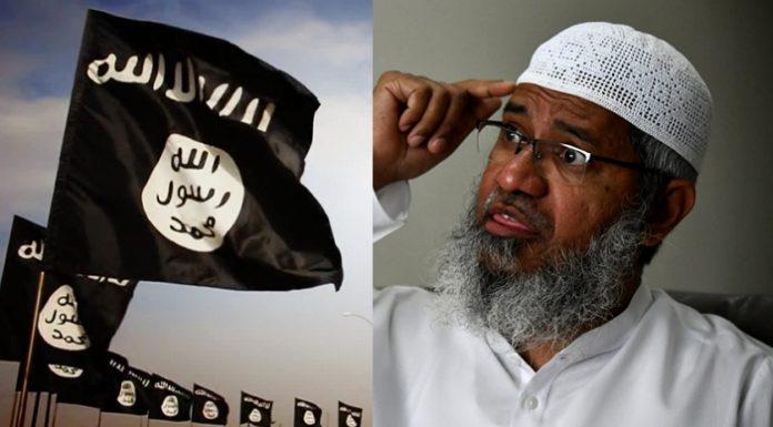 जाकिर नाइक, ISIS