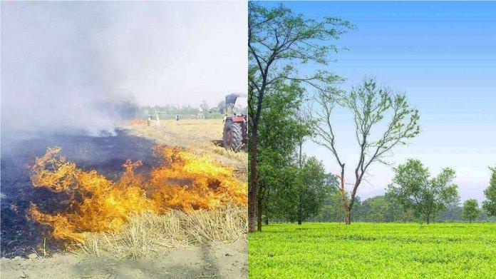 वायु प्रदूषण, पंजाब-हरियाणा-बिहार