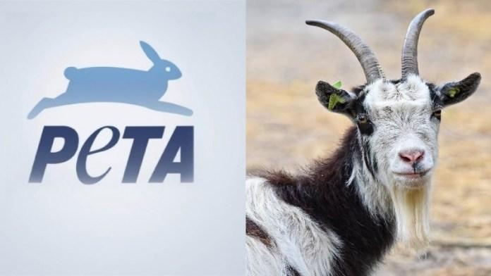 PETA, इस्लाम