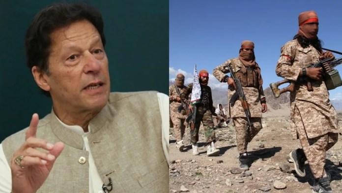 तालिबान की सेना को पुनर्गठित करने में मदद करेगा पाकिस्तान