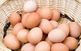Photo of 1 अंडे में प्रोटीन की मात्रा