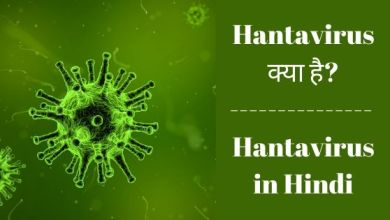 Photo of Hantavirus क्या है? – Hantavirus in Hindi