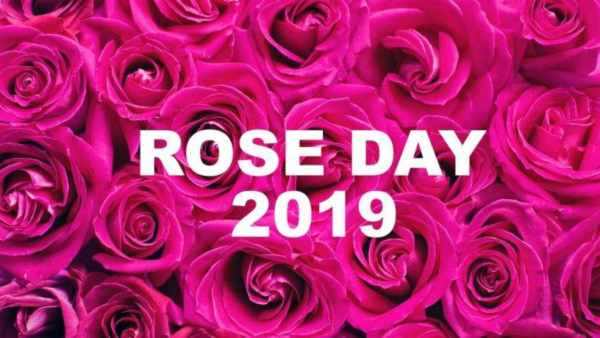 Happy rose day pic hd