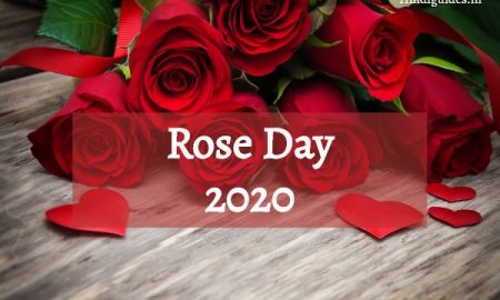 rose डे इन हिन्दी