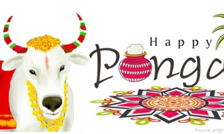 Pongal Essay in Hindi