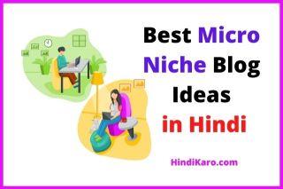 Micro niche blog ideas in hindi