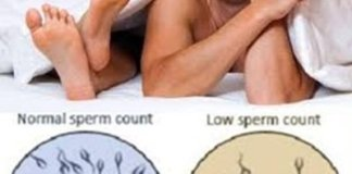 sperm count test
