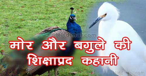Peacock And Crane Motivational Moral Story in Hindi , Moral Story in Hindi, Hindi Story, moral stories in hindi peacock and crane motivational moral story in hindi Peacock And Crane Motivational Moral Story in Hindi Peacock And Crane Motivational Moral Story in Hindi 01