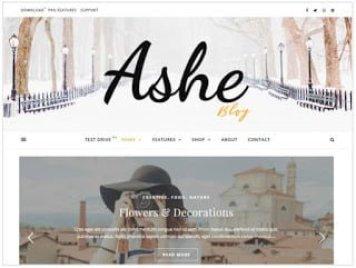 Blogging in hindi,hindi blogging