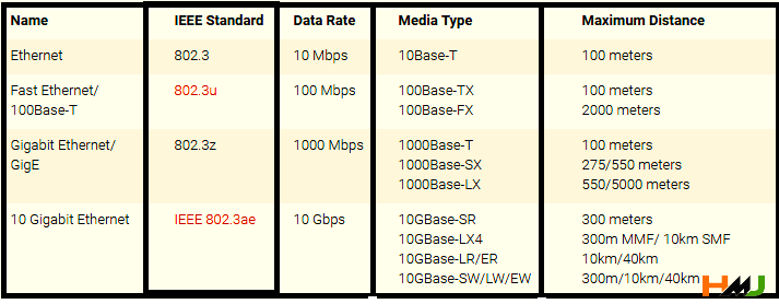 Types of Ethernet network in Hindi
