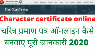 Character certificate online