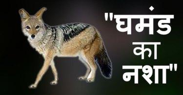 ghamand-ka-nasha hindi story