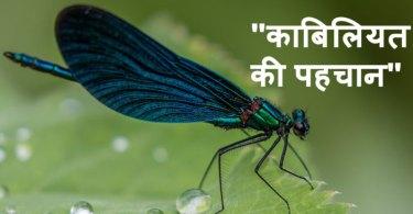 kabiliyat-ki-pehchan story in hindi