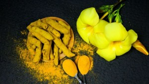 Read more about the article What is Naturopathy, Meaning, Definition, Benefits, Principal