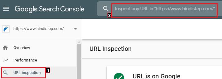 Google URL Inspection Tool2