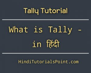 tally tutorial in hindi
