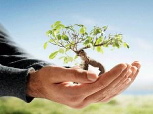 Read more about the article मोदी युग में पर्यावरण संरक्षण