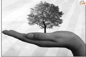 Read more about the article पेड -पौधों के साथ बानाईये भावनात्मक रिश्ते