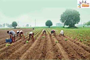 Read more about the article ग्रामीण भारत को वास्तविक भारत में बदलने की जरूरत