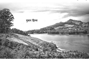 Read more about the article मनमोहक…केरल व तमिलनाडु