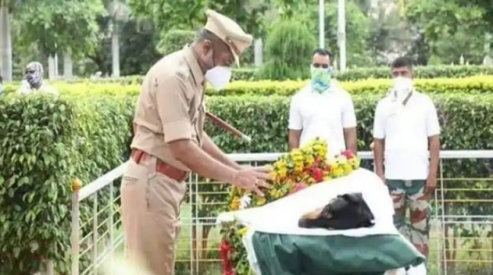 पुलिस फोर्स के Sniffer Dogs में से एक होनहार सिपाही रॉकी की मौत, सम्मान के साथ दी गई अंतिम विदाई