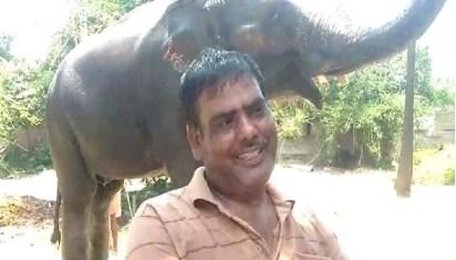 बेटे को जायदाद से बेदखल कर इस शख्स ने अपने 2 हाथियों के नाम कर दिया 5 करोड़ की संपति, दिलचस्प है वजह
