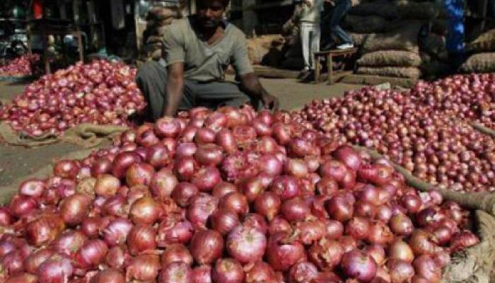 Onion Price: काबू में आई प्याज की कीमत, फुटकर में इतना हुआ मूल्य-अभी और गिरेगा भाव