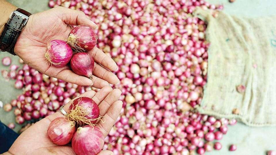 Onion Price: सरसों तेल के दाम में भारी गिरावट के बाद, अब जानिए क्या हैं प्याज के नये दाम