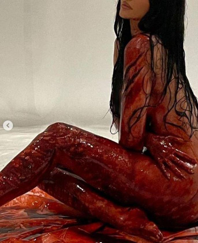 बिना कपड़ों के खून में नहायी काइली जेनर ने शेयर की फोटो, सुहाना खान ने किया ऐसा कॉमेंट