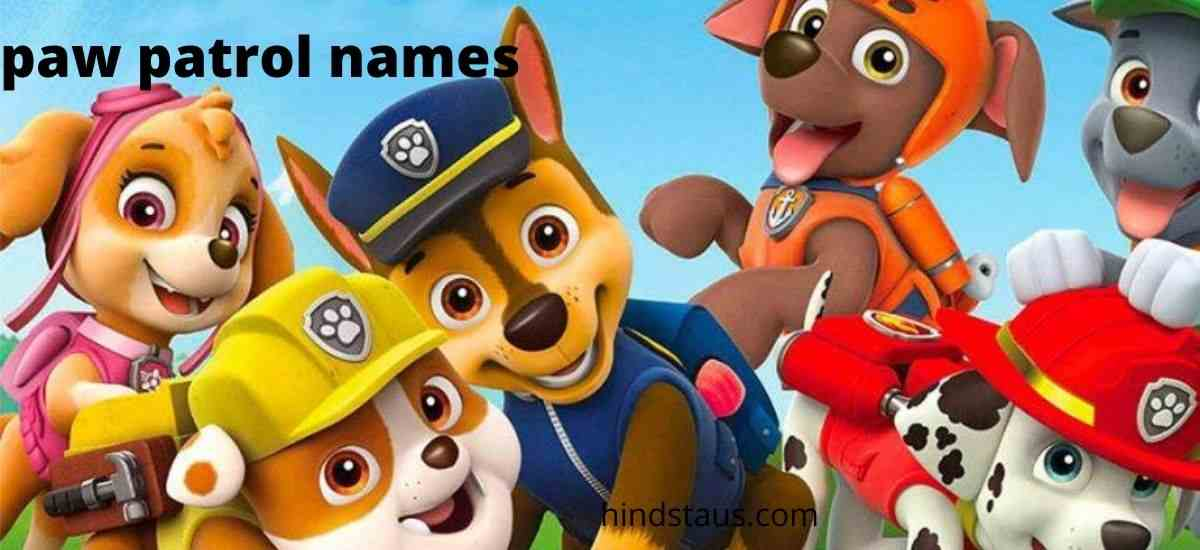 12 Best Paw Patrol Names With Their Jobs - Hind Status
