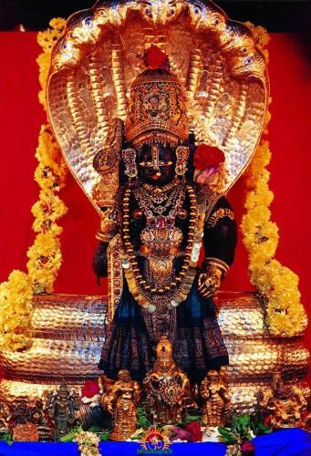 Udupi Krishna swamy