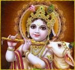 Lord Bala Krishna with cow