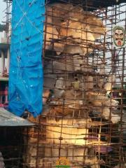 Making Khairatabad Ganapati 2014 8