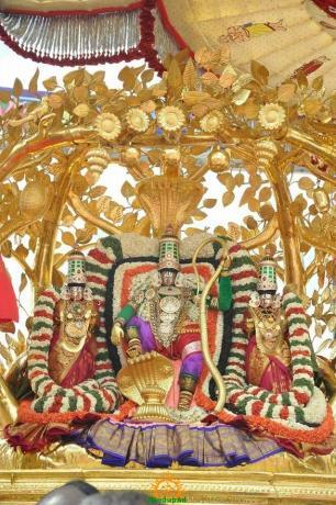 4 Kalpavriksha Vahana Seva TTD Brahmotsavam