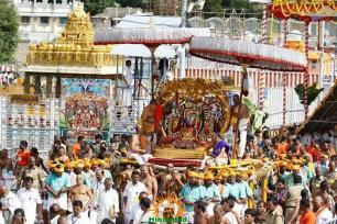 6 Kalpavriksha Vahana Seva TTD Brahmotsavam