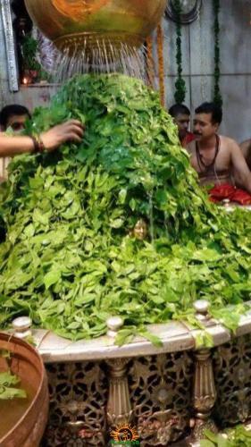 Ujjain Mahakaleshwar 10