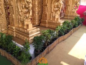 Balapur Ganesh 2016 setting 7